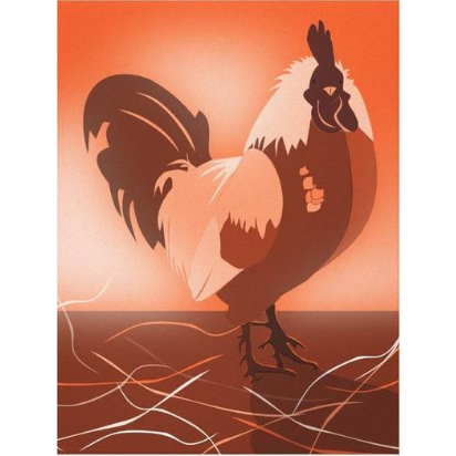Orange-Red Rooster At Sunset, Canvas Print