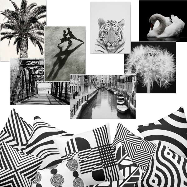 Black and white photo prints and black and white pillows