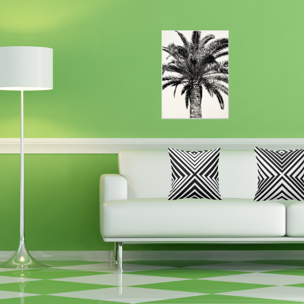 Palm photo print and black and white pillows with cornered pattern