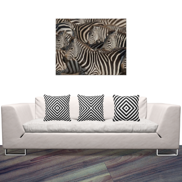 Zebras Photography And Black And White Pillows With Box Pattern