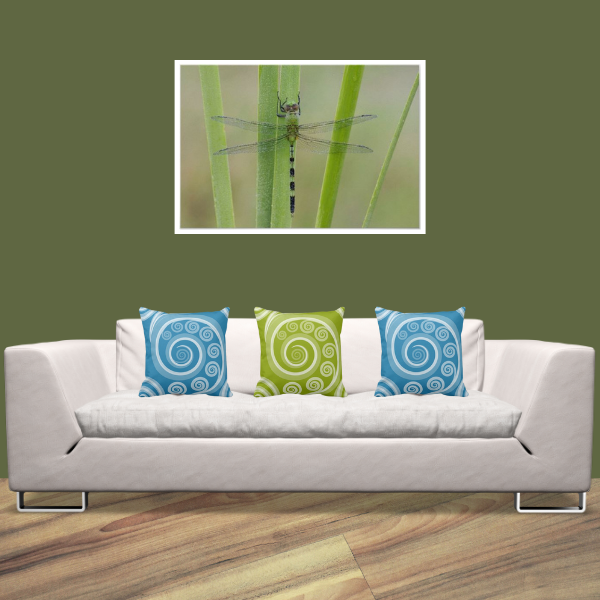 Dragonfly Print Wall Decor With Curl Patterned Pillows